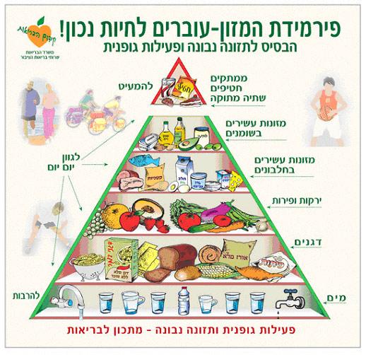 פירמידת המזון הישראלית