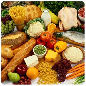 מזון ותזונה